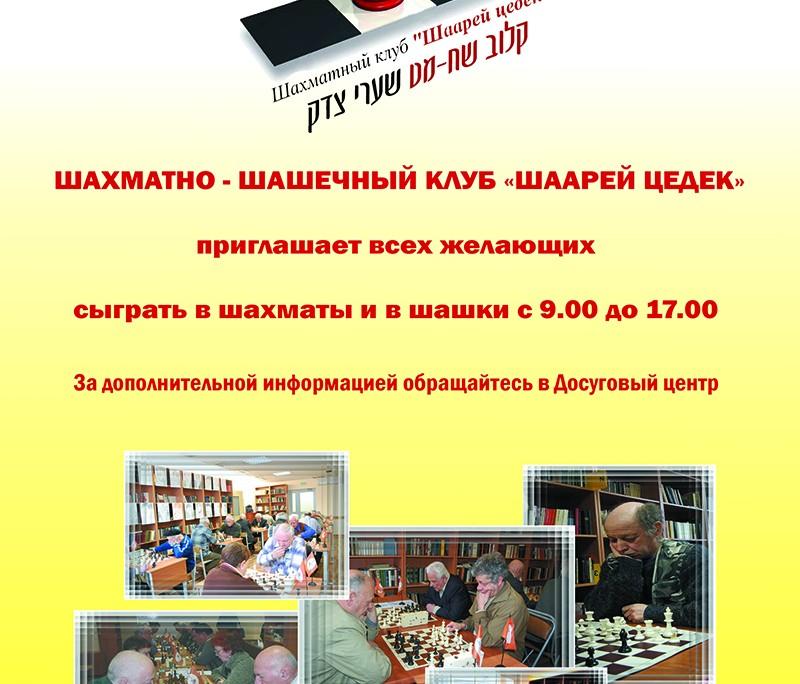 шахматы web